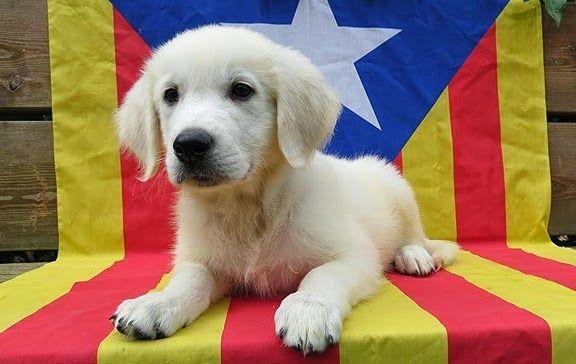 La independencia de Cataluña se ha convertido en arma arrojadiza entre nacionalistas españoles y catalanes