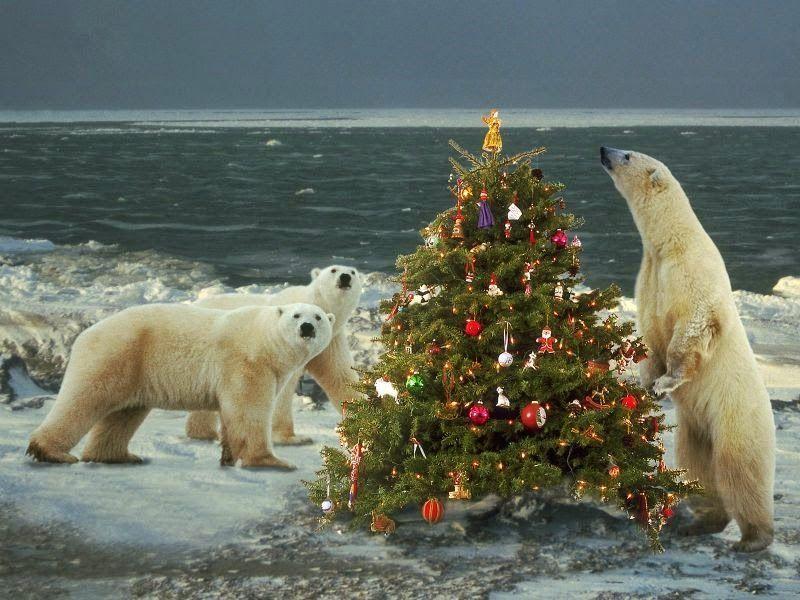Red Eléctrica (REE) nos desea Feliz Navidad con un incremento del dividendo