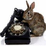 Vodafone es un operador de telefonía móvil, telefonía fija y de ADSL con sede en Reino Unido
