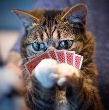 Jugando a dos cartas: revalorización y dividendos