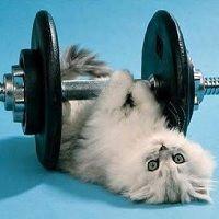 Hacer ejercicio regularmente es fundamental para tener buena salud