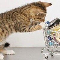 Los gastos en supermercado se pueden optimizar aprovechando las ofertas