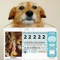 La lotería como detonante de la independencia financiera