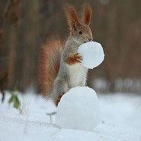 El ahorro que conseguimos lo utilizaremos para hacer rodar más rápido la bola de nieve