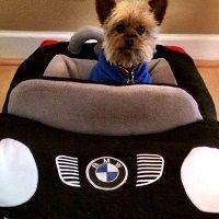 BMW, el fabricante de coches de lujo y motocicleta, es otra empresa de Europa que está entre las mejores del mundo