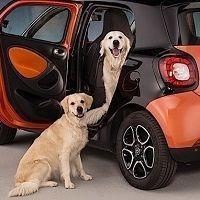 Las empresas del sector del automóvil cotizan a ratios atractivos