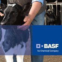 BASF, una empresa de Europa que además es la mayor química del mundo