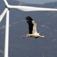 REIT especializado en energía verde