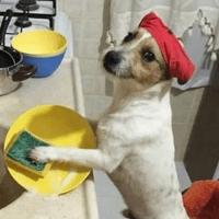 Mi nueva vida traerá consigo más tareas del hogar