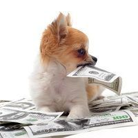 Los préstamos entre familiares son muy útiles para regularizar transmisiones de dinero y no tributar innecesariamente en sucesiones por dinero que es realmente tuyo