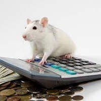 Ingeniería fiscal aplicada a carteras de dividendos familiares